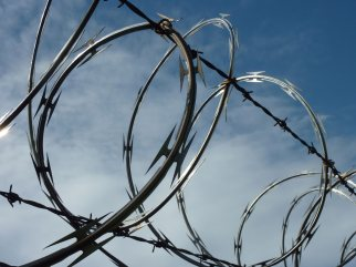 Razor Wire: Single Wire Type